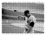 Mickey Mantle Puzzle