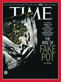 THE RISE OF FAKE POT