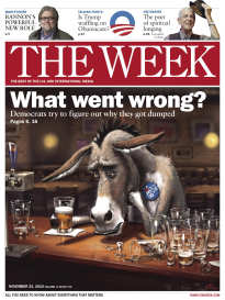THE WEEK WHAT WENT WRONG?